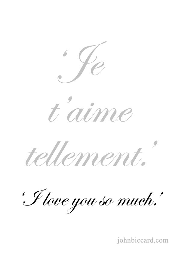 I Love You So Much French Francais French