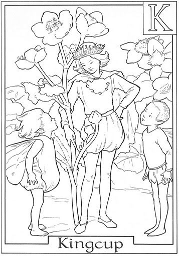 Cicely Mary Barker Coloring Pages | ... by St. James Infirmary Blues on  printable coloring book pages, vi | Fargelegging, Alv | 512x357