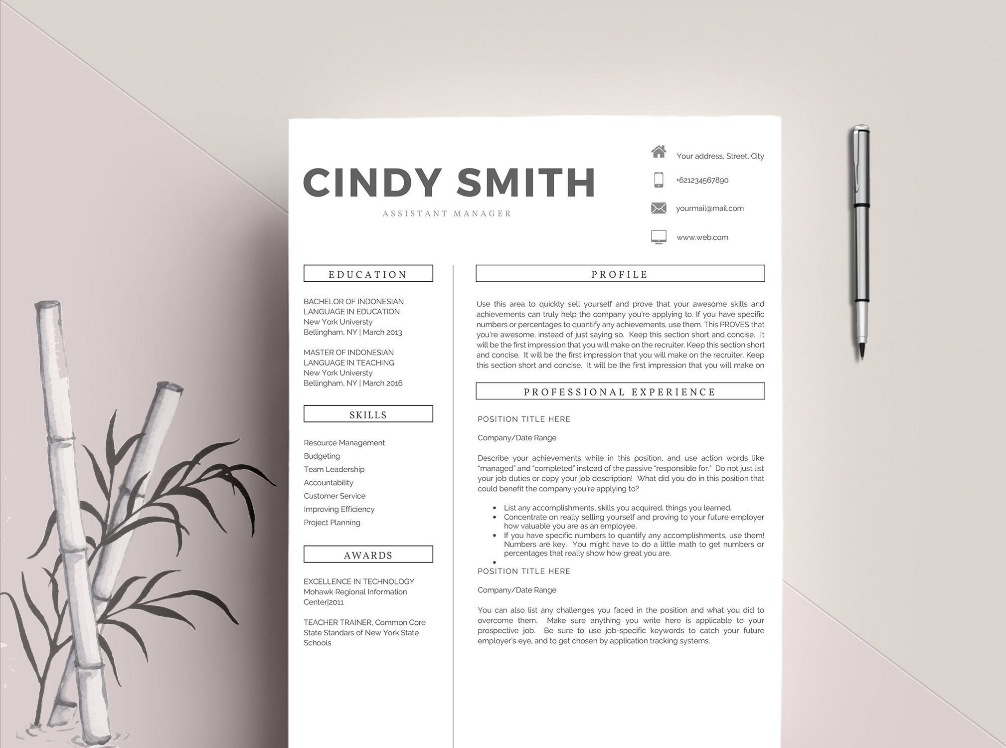 Professional Resume Template / CV Template, 2 Pages Word Resume ...