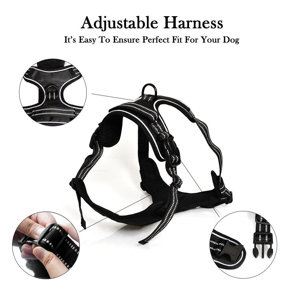 Pin on Dog Harness Ideas
