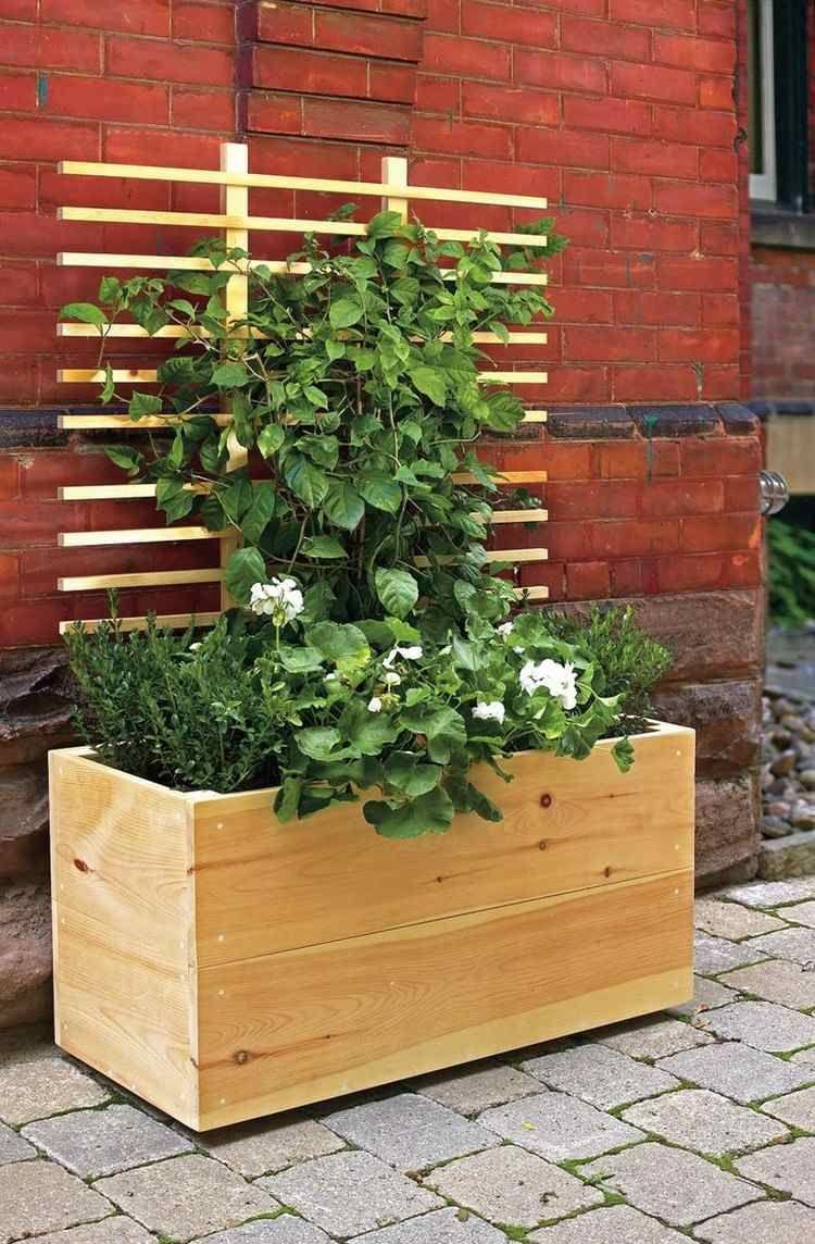Holz Pflanzkubel Mit Rankhilfe Fur Kletterpflanzen Pflanzen Pflanzkubel Kletterpflanzen
