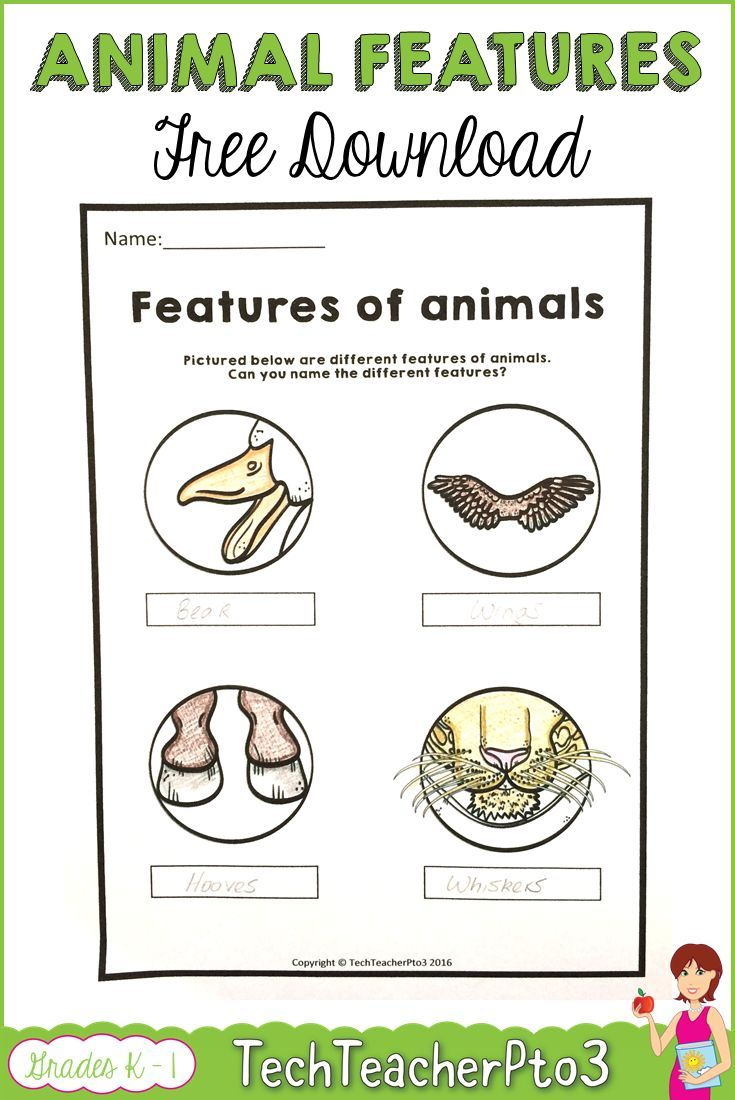 Farm Animals Worksheets Free Download Free kindergarten