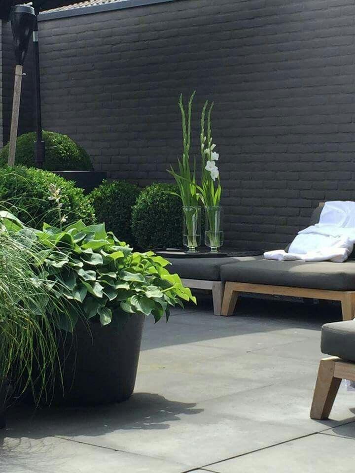 Pin de Beatriz Salas Escarpa en Jardines - Terrazas Pinterest - jardines en terrazas