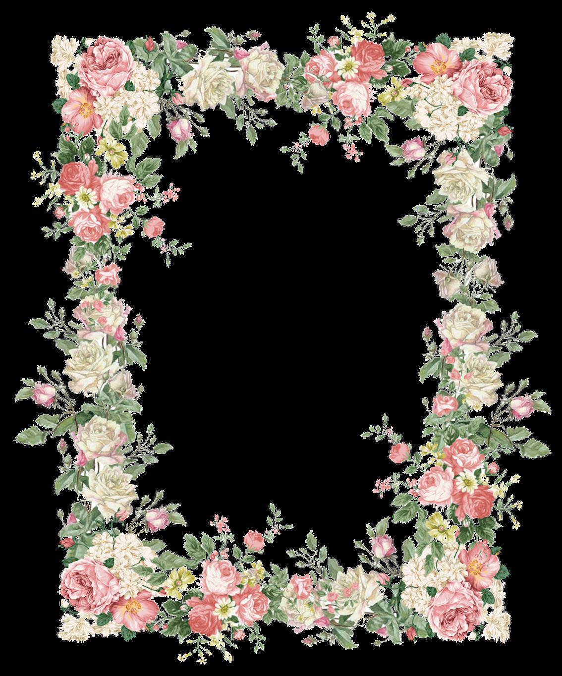 1,134×1,364 pixels