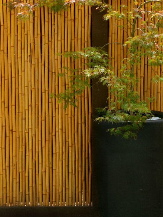 Cloture De Jardin En Bambou Design Jardin Cloture Bambou