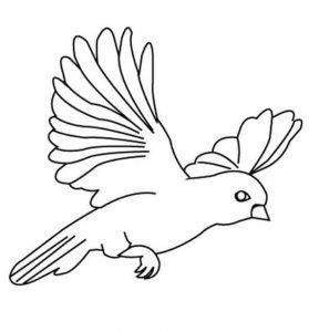 Okulöncesi Kuş Boyama Etkinliği Evimin Altın Topu 1 Ausdrucken