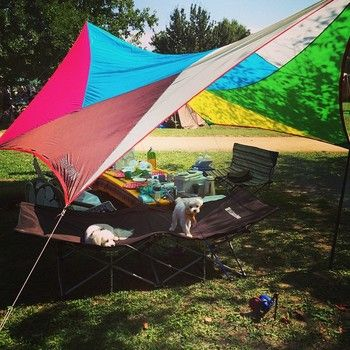 デイキャンプデビューしよう お洒落なキャンプグッズでアウトドアをもっと楽しく キナリノ アウトドアキャンプ アウトドア デイキャンプ