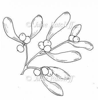 Mistletoe Drawing Google Search