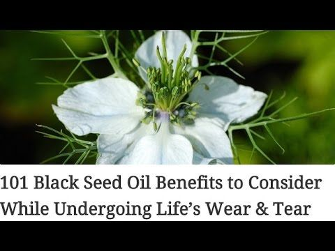 101 Black Seed Oil Benefits to Consider While Undergoing