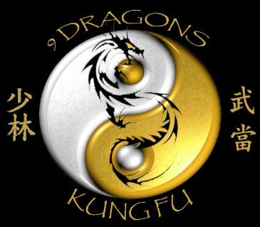 New Logo for the 9 Dragons Kung Fu school. Head Instructor Sifu Kaneen over  25 ce4e70353