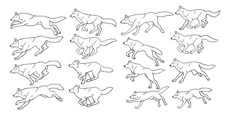 Wolf Running Cycle Drawing Dogs In 2019 Pinterest