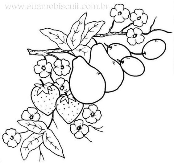 Dibujos para bordar a mano frutas  Imagui  dibujos de frutas