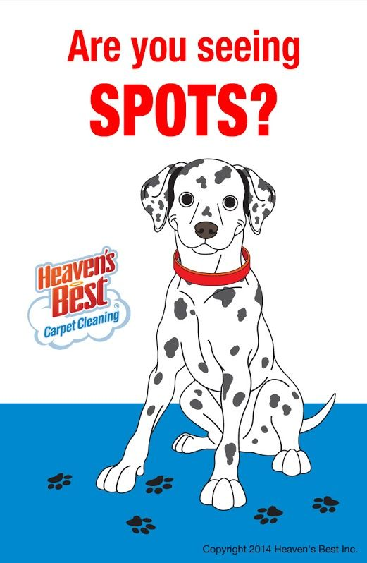 If You Are Seeing Spots On Your Carpets And Floors That