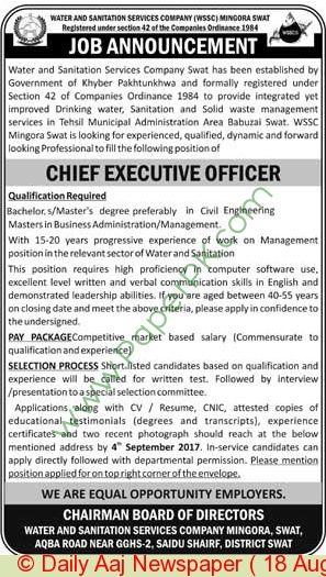 Water \ Sanitation Services Company Swat Jobs Jobs In Pakistan - chief executive officer job description