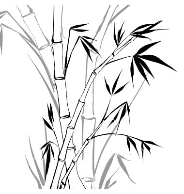 bamboo vector image on vectorstock bamboo drawing art bamboo tattoo bamboo drawing