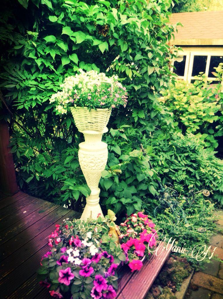 Mein schöner Garten!