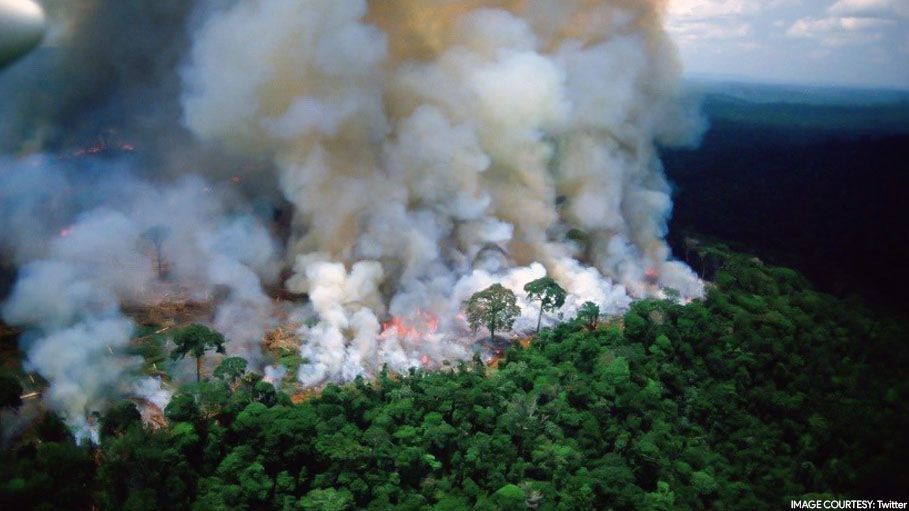 Amazon Rainforest Is Burning And This Is How Twitterati React To