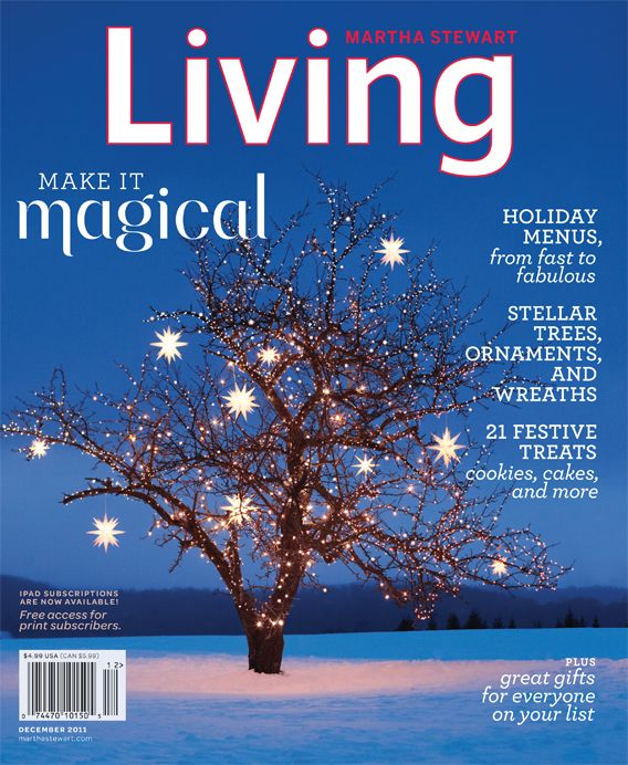 Martha Stewart's Magazines | Outdoor christmas lights ...