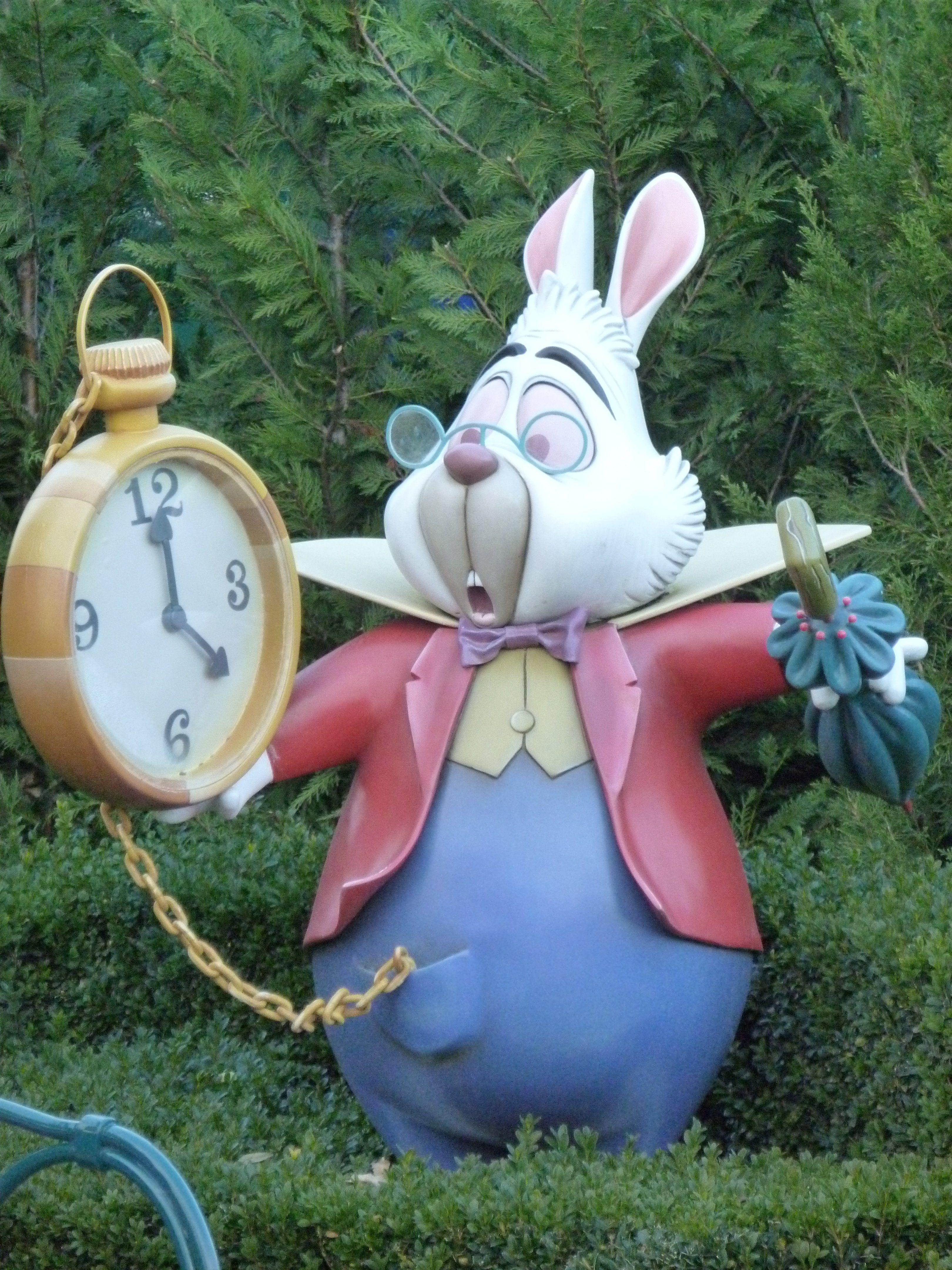 Lapin D'alice Au Pays Des Merveilles : lapin, d'alice, merveilles, Lapin, Alice, Merveilles, Merveilles,, Déguisement
