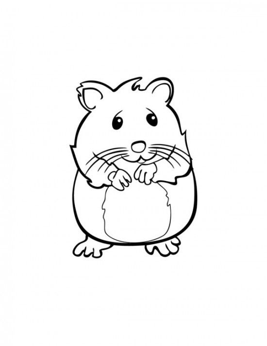 Pets Hamster Coloring Pages For Kids All About Free Coloring Pages For Kids Coloring Pages Hamster Baby Hamster