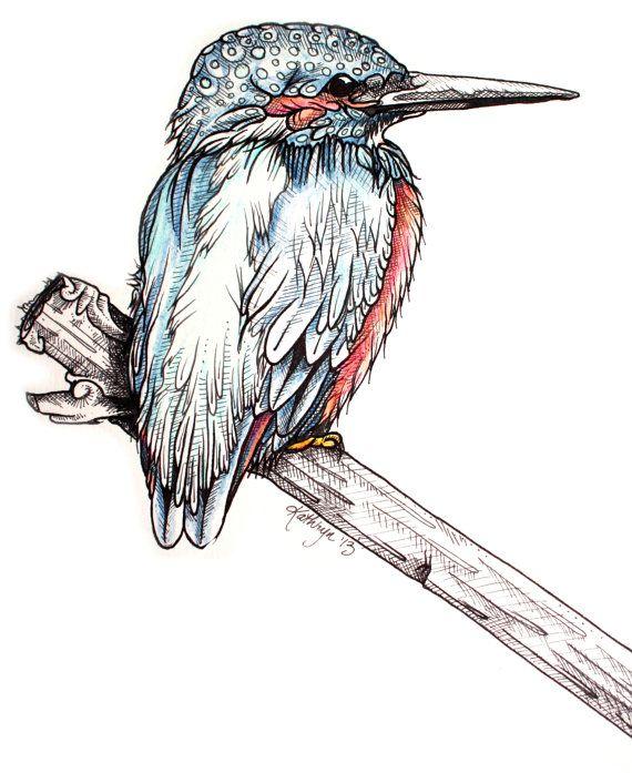 Kingfisher   Bird art, Art practice, Art sketches