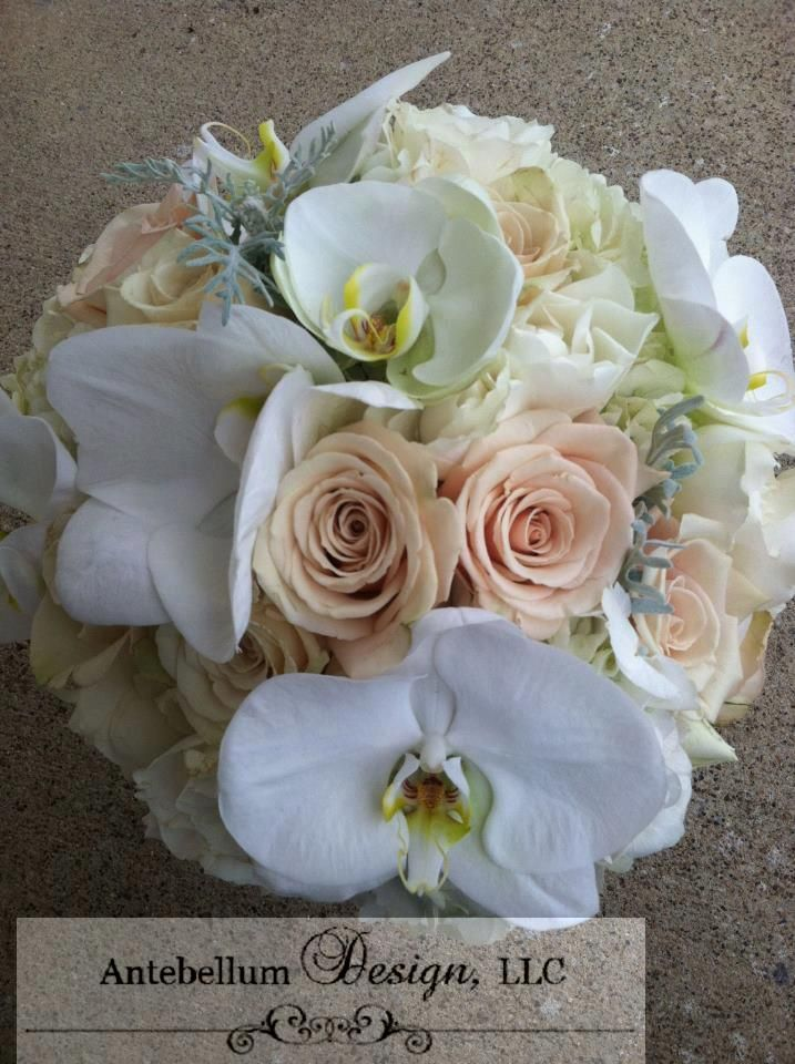 Champagne Bouquet With Phalaenopsis Orchid Wedding Flowers By Dallas Florist AntebellumDesign