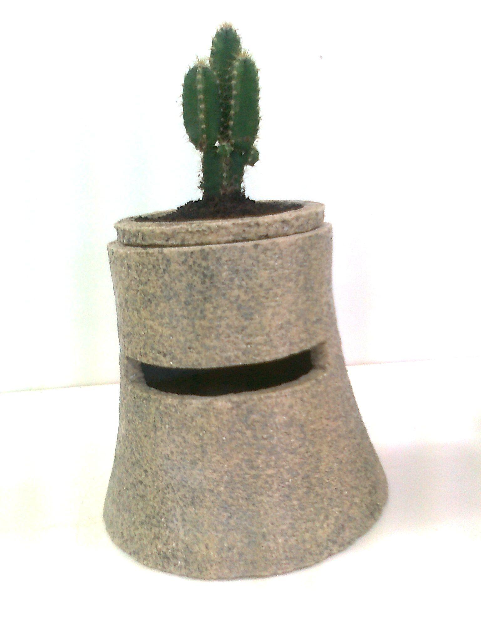 Yelmo-macetero para cactus
