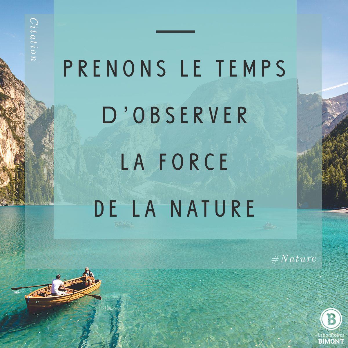 Prenons Le Temps D Observer La Force De La Nature Cette Citation