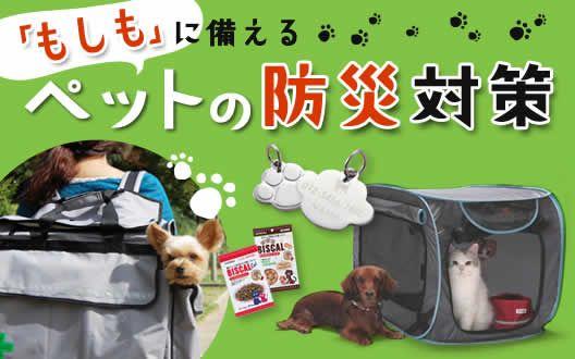 防災グッズ 犬 猫用特集 通販のベルメゾンネット 猫 防災 ペット