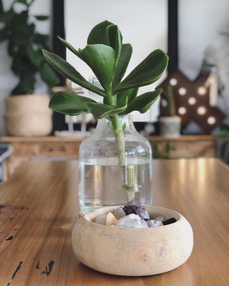 Dining Table Centrepiece Ideas In 2020 With Images Dining Table Centerpiece Table Centerpieces Dining Table Decor Centerpiece