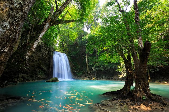 """Erawan Waterfall"" Kanchanaburi, Thailand 