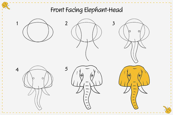 How To Draw An Elephant For Kids In Easy Steps Elephant