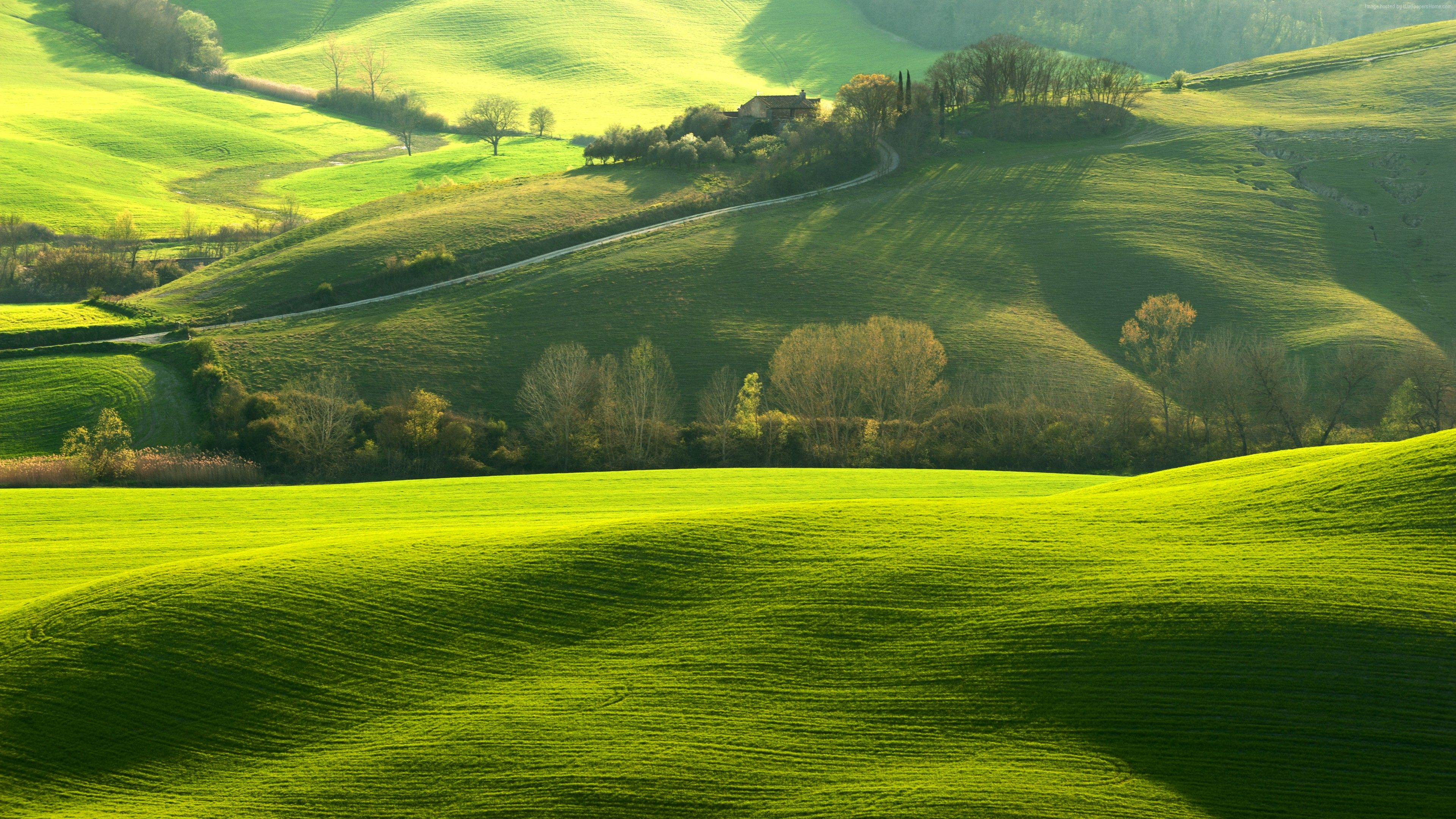 Wallpaper Tuscany Italy Europe Hills Green Field 8k Travel Hd Nature Wallpapers Nature Wallpaper Nature