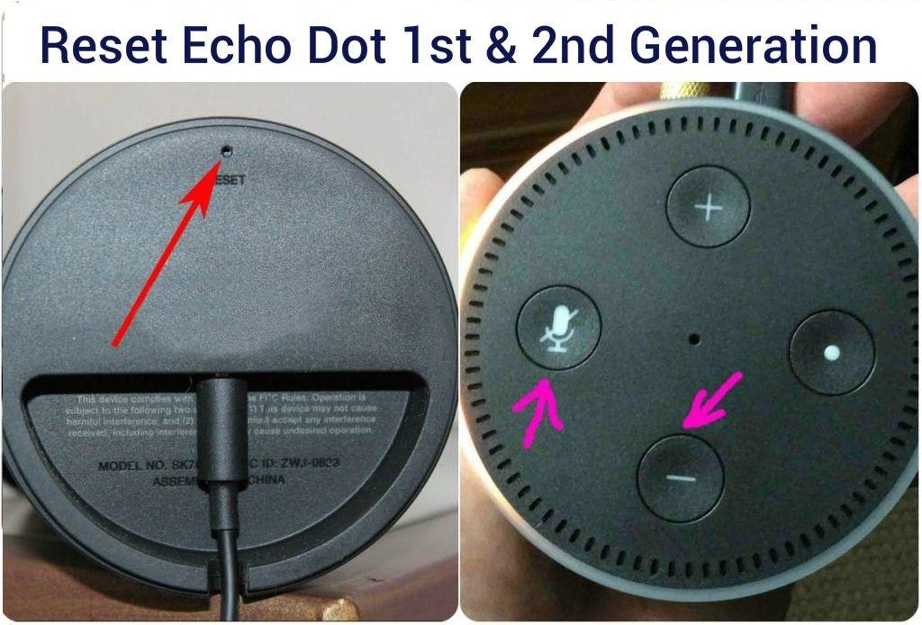 How to Reset Alexa Echo Dot? Echo dot, Alexa app, Alexa