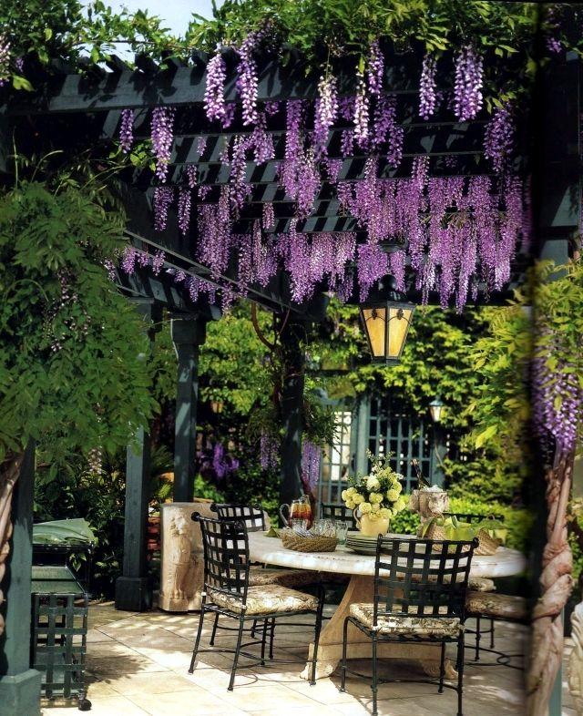 Everything About Garden, Flower And Garden, Backyard, Garden, Flowers,  Grow, Growing, Plant, Tree,