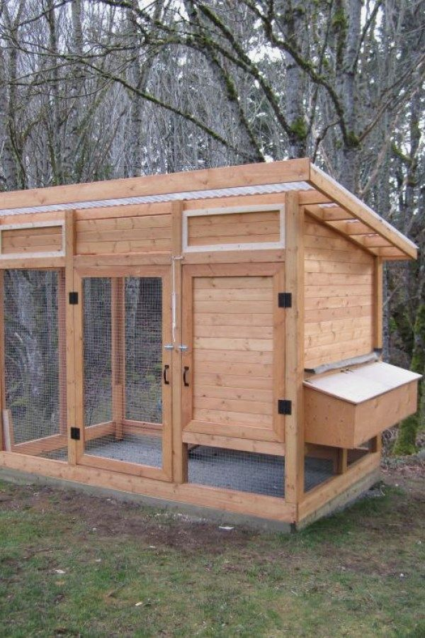 10 Awesome Diy Chicken Coop Plans You Should Assemble For Your