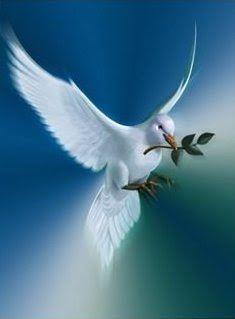 Image result for symbol of hope