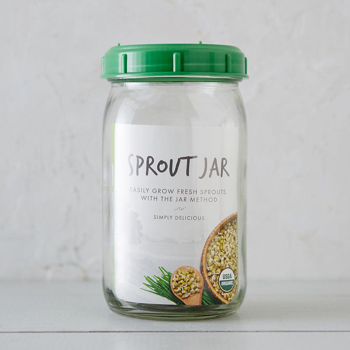 Alfalfa sprout grow jar kit alfalfa sprouts organic