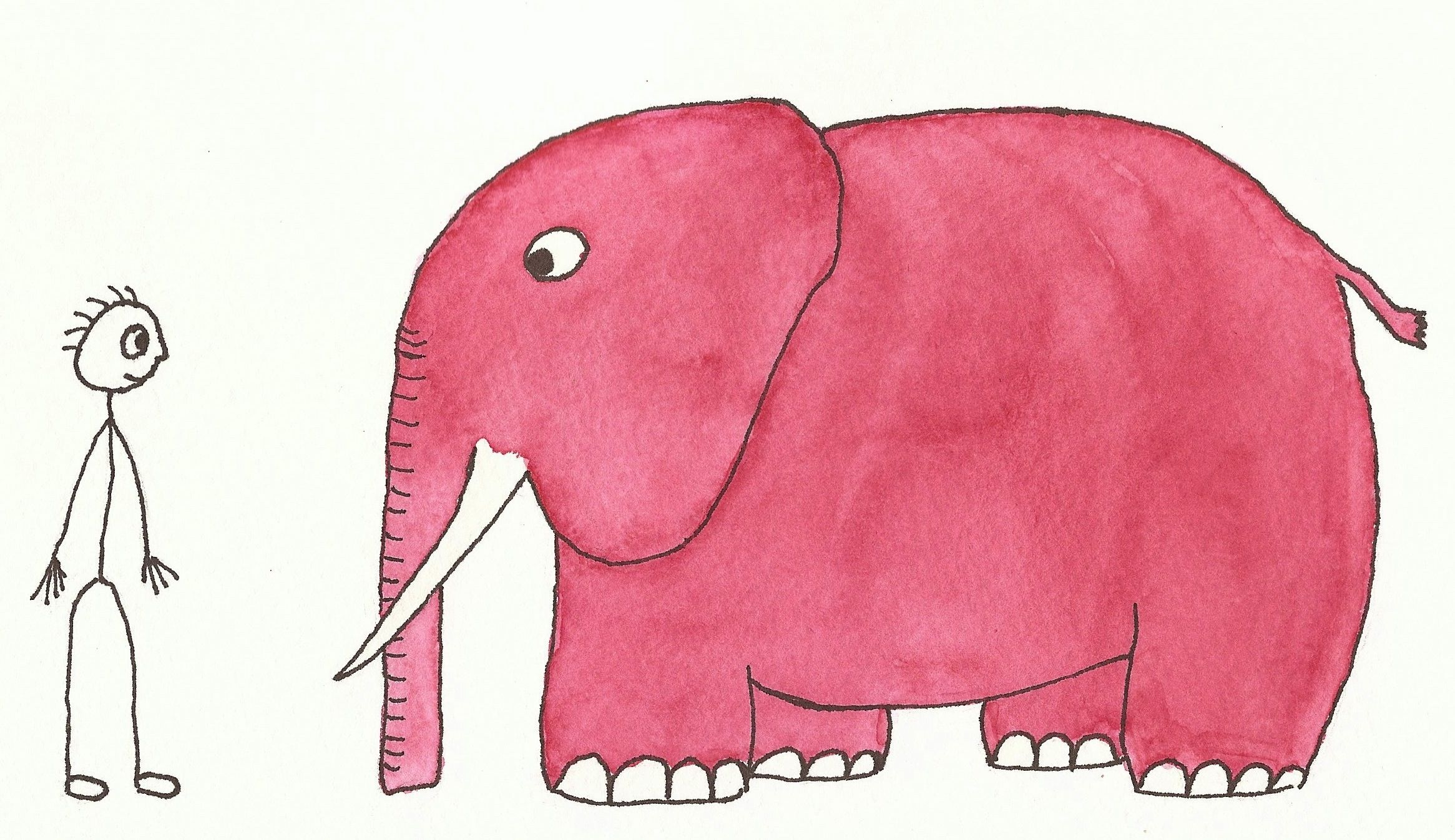 Dbt And Distressed Elephants An Expert Interview With