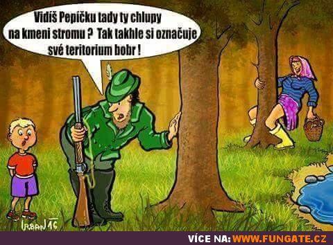 Vidíš Pepíčku tady ty chlupy na kmeni stromu?