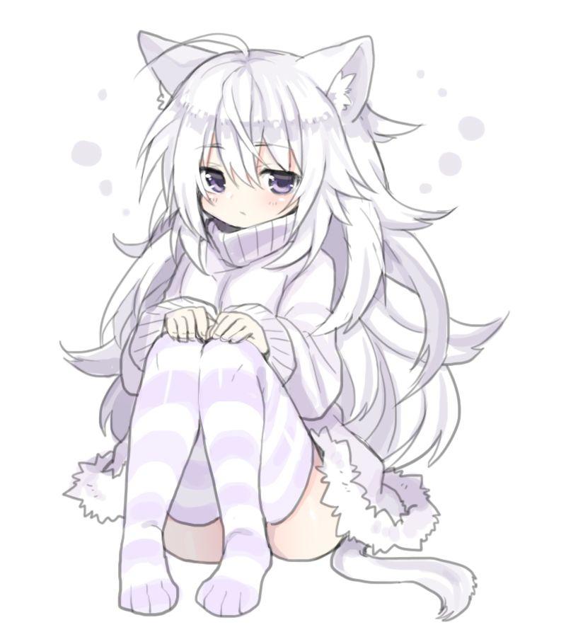 anime girl hoodie cat