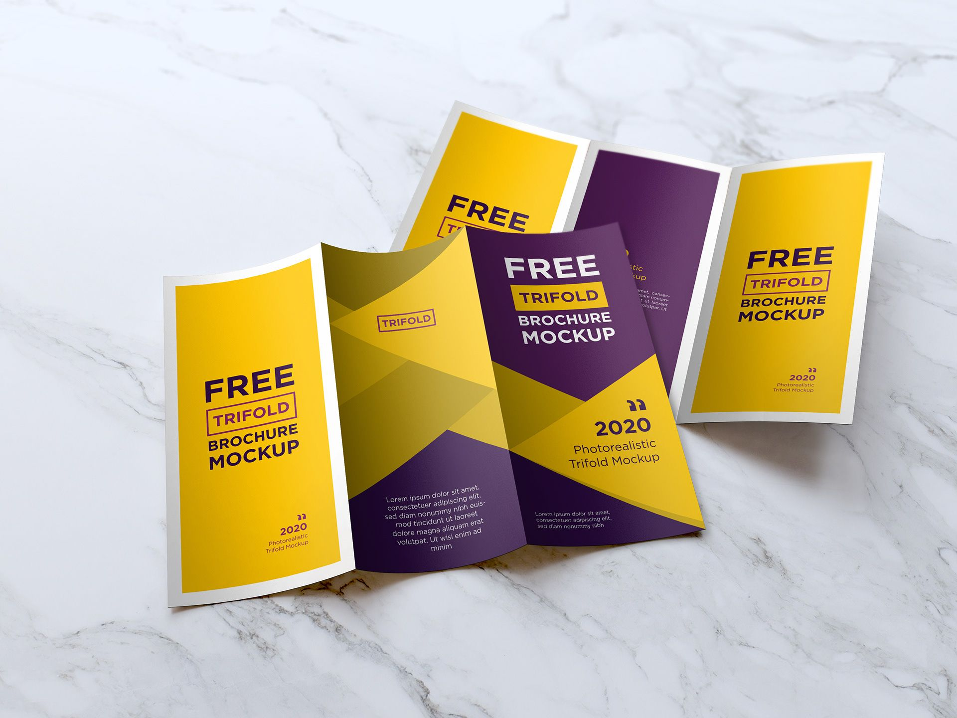 Free Trifold Brochure Mockup Psd In 2021 Trifold Brochure Brochure Mockup Psd Brochures Mockups