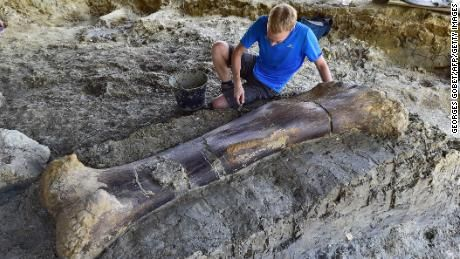 New bone, who dis? Paleontologists say this femur belongs to one of the biggest dinosaurs of all time #historyofdinosaurs