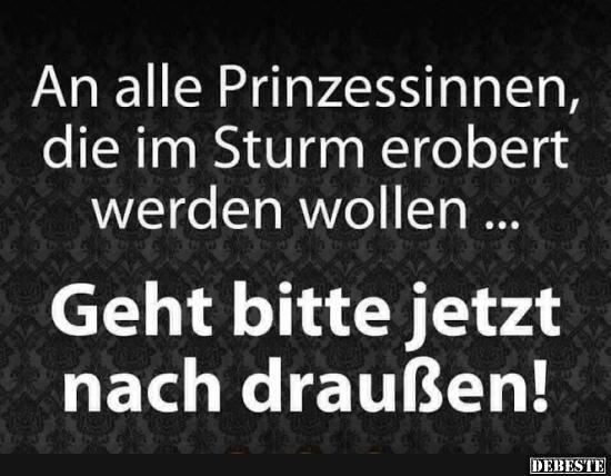 An Alle Prinzessinnen Die Im Sturm Erobert Werden Wollen Lustige Bilder Spruche Witze Echt Lustig Witzige Spruche Spruche Coole Spruche