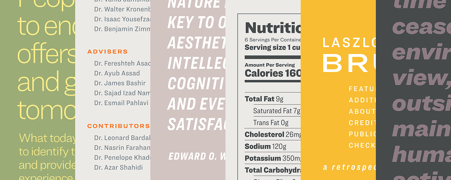 The new 'Ringside' font family from Hoefler&Co  is a real workhorse
