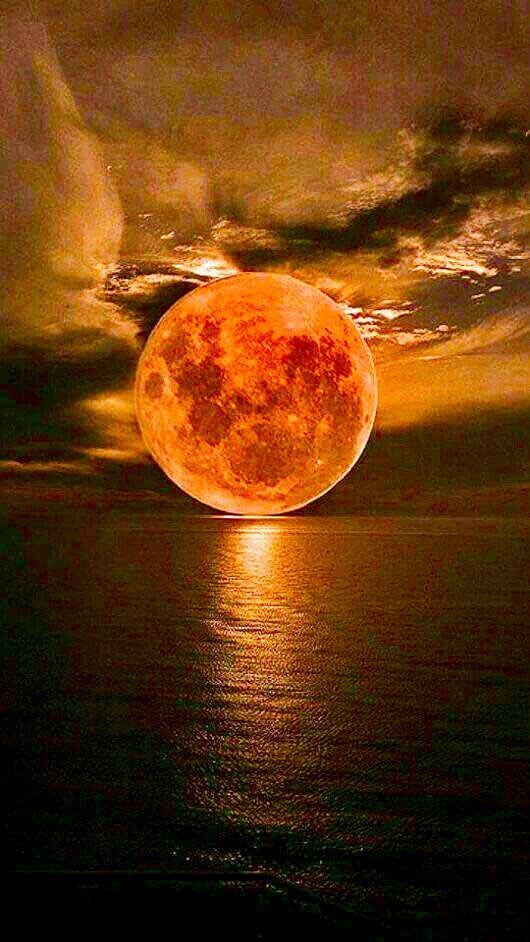 blood moon 2019 arizona - photo #40