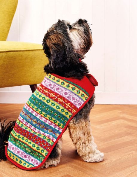 Fair Isle Dog Coat - We love this gorgeous pooch cover knitted in ...