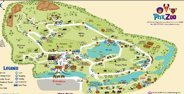 Phoenix Zoo Map Phoenix Zoo Map | AZ   Phoenix Zoo | Zoo map, Phoenix, Places Phoenix Zoo Map