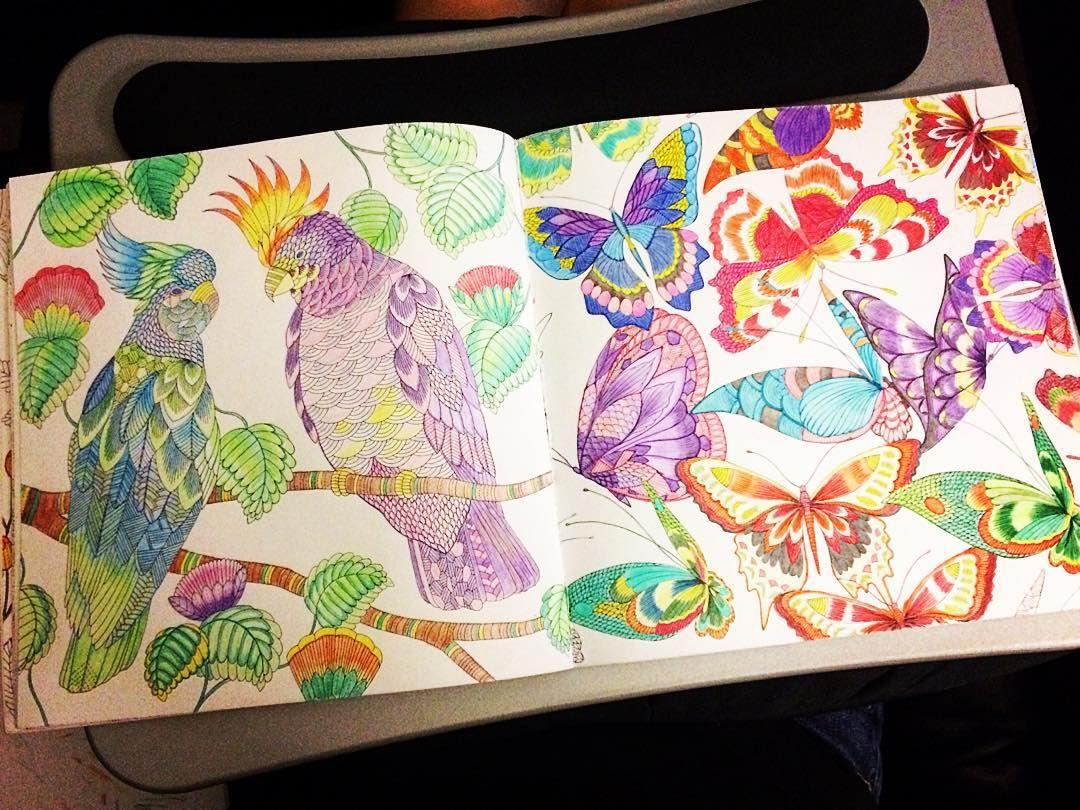 #adultcoloringbook #tropicalwonderland #milliemarotta #stressreliever