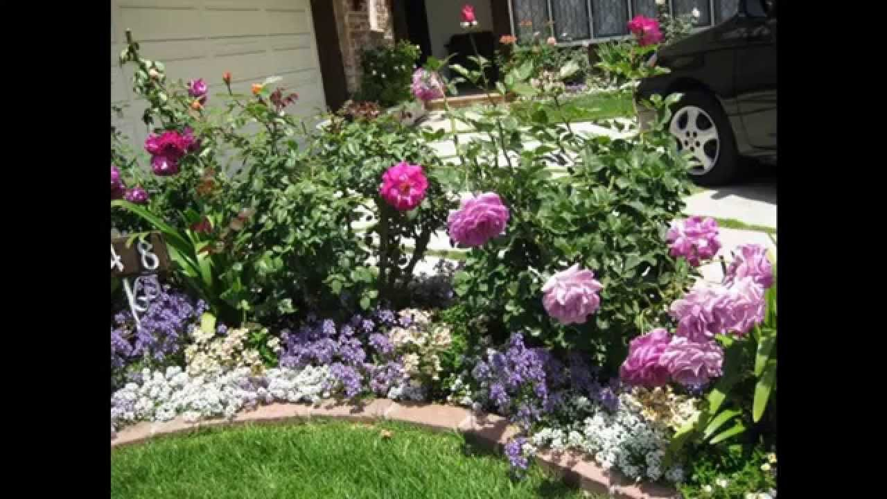 Front Yard Garden Roses Rose Garden Design Small Rose Garden